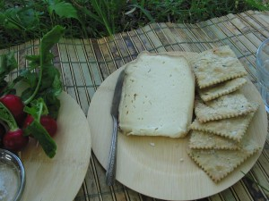 Cheese and Farro Crackers